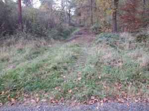 Löwe-plus-Bodenschutz a 20-11-2017