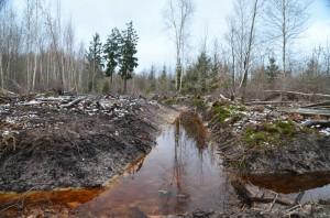 Entwässerungsgraben FFH-Gebiet NS zu Kommentar 28-2-2017