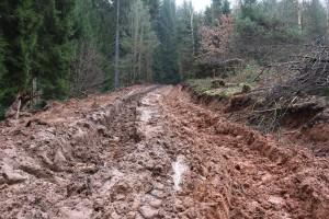 Rückegasse Schlammwüste Stadtwald Merzig Naturland-FSC-PEFC zert 2-3-2014