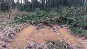 Rückegasse voller Wasser mit Restholz zugedeckt 17-1-2018