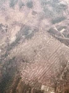 Kahlschläge bei Frankf aus Flugzeug 25-3-2018